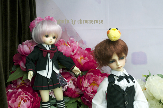 dolpa31after_09