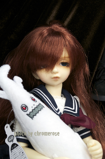 dolpa31after_13