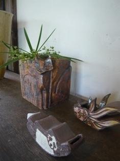 plants-ikimonokei