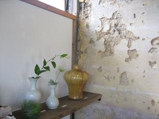 plants.okutana