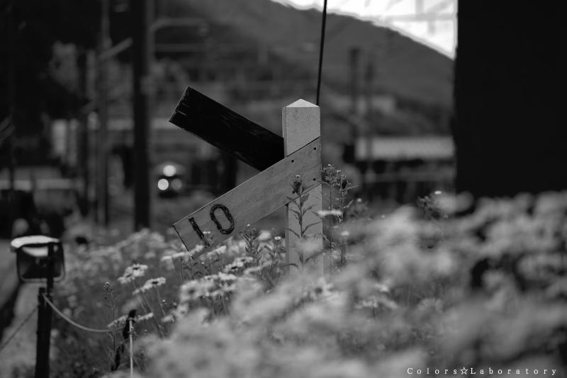 撮り鉄みたいな 奈良井駅