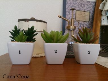 100均 鉢植えフェイクリメイク(A)
