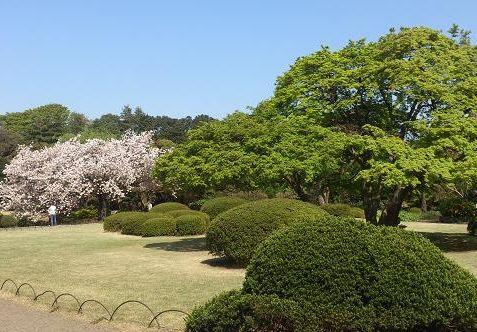 日本庭園ー