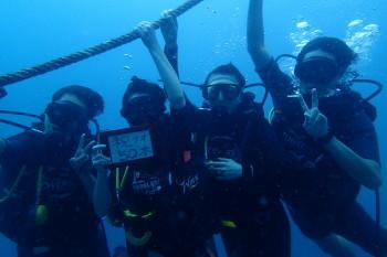 タオ島、50本記念