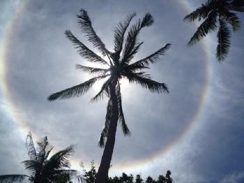 虹、タオ島