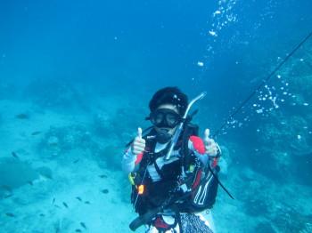ダイブマスタートレーニング、タオ島、たいがちゃん