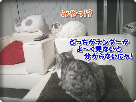 4_20140707002929f74.jpg