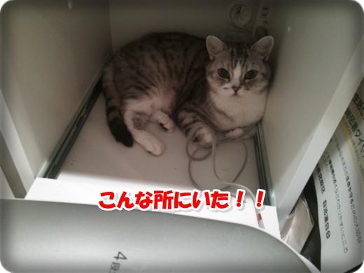 DSC_0927-001.jpg