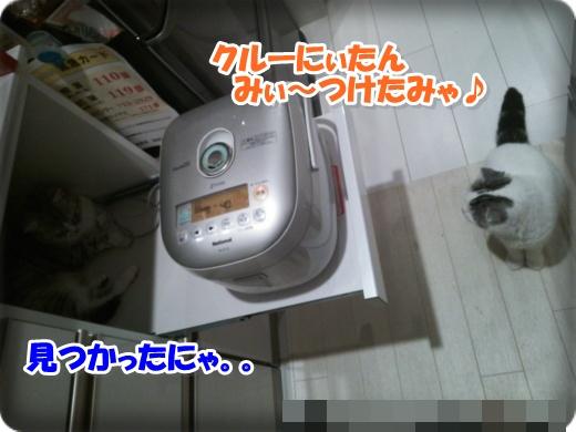 DSC_0937-002.jpg