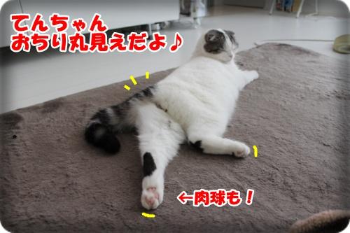 IMG_2040-001.jpg