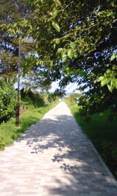 横浜水道道緑道