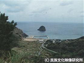 F062奄美ノロ02今里01