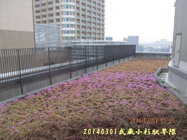 0301nakahara04.jpg