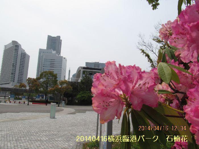 0416yokohama04.jpg