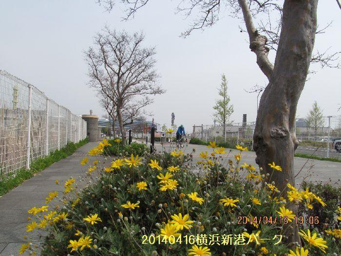 0416yokohama07.jpg