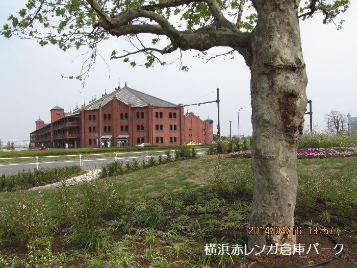 0416yokohama21.jpg