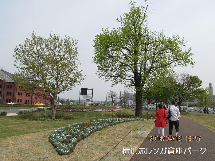 0416yokohama22.jpg