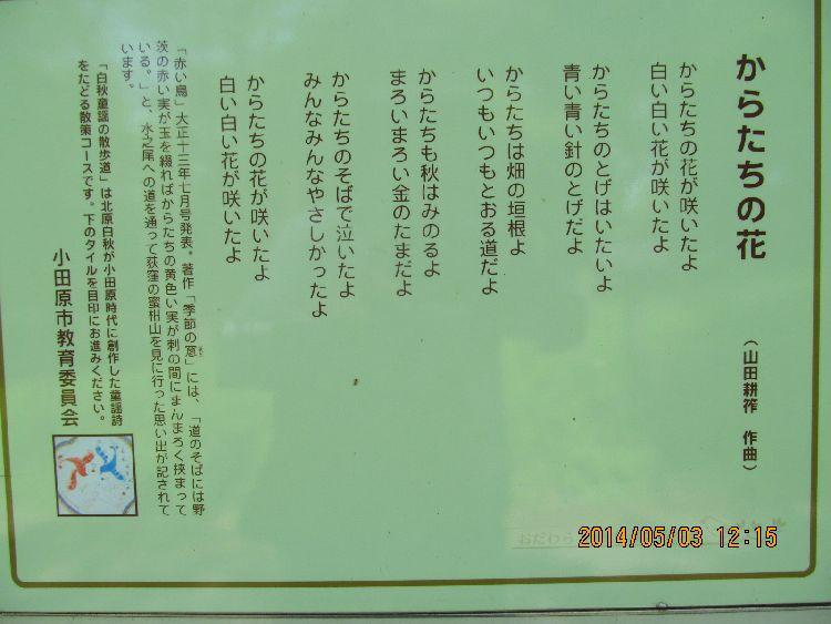 0503karatashi04.jpg
