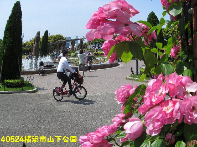 0524yamashita13.jpg