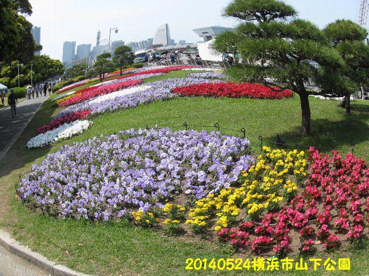 0524yamashita16.jpg
