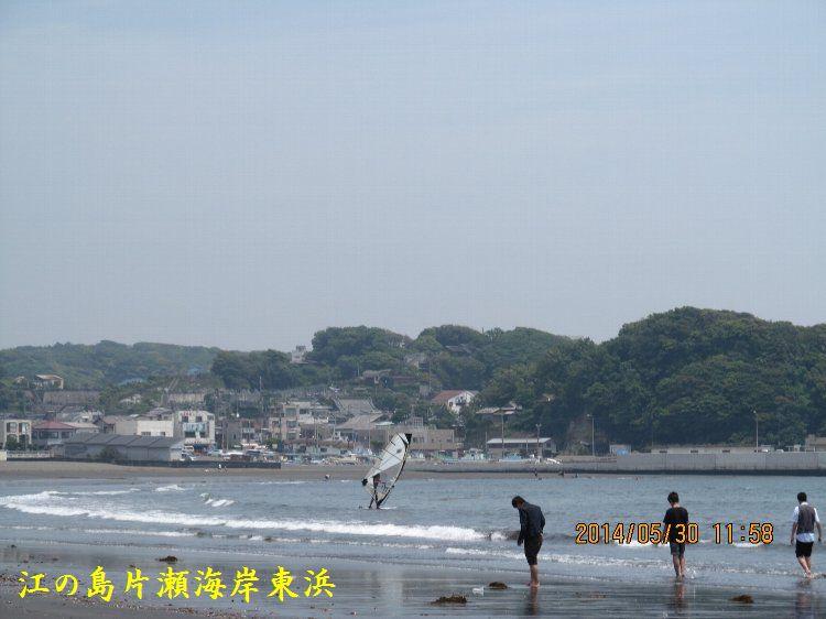 0530higashihama04.jpg