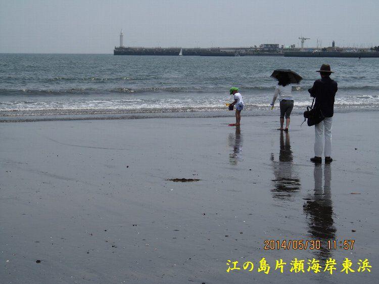 0530higashihama06.jpg