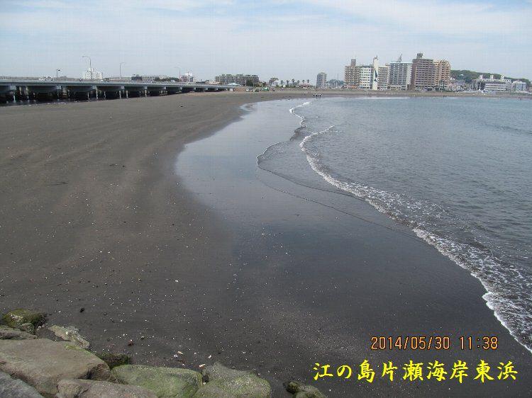 0530higashihama10.jpg