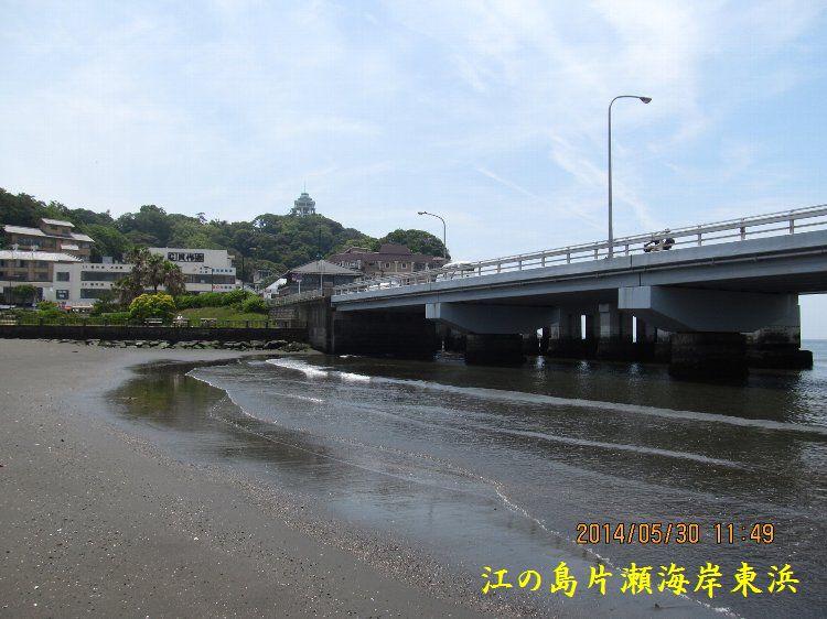 0530higashihama11.jpg