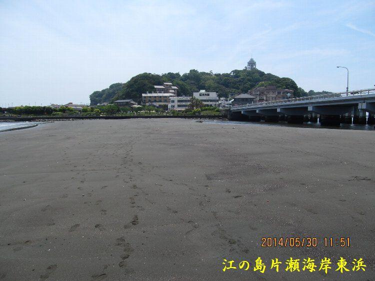 0530higashihama12.jpg