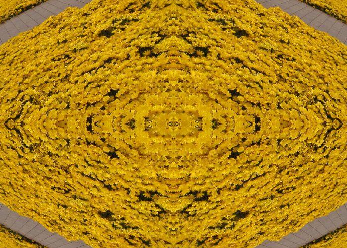 20140416-286abcd.jpg