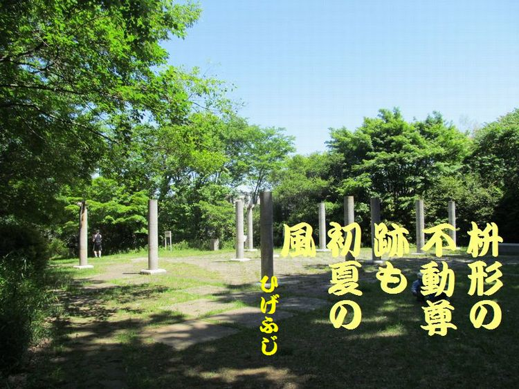20140518haiku11.jpg