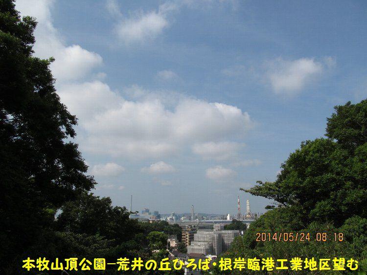 20140524honmoku05.jpg