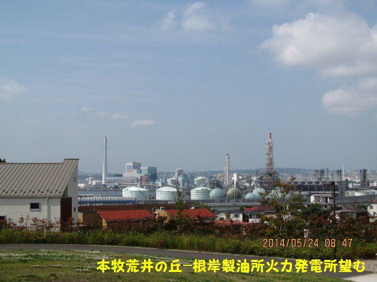 20140524honmoku11.jpg