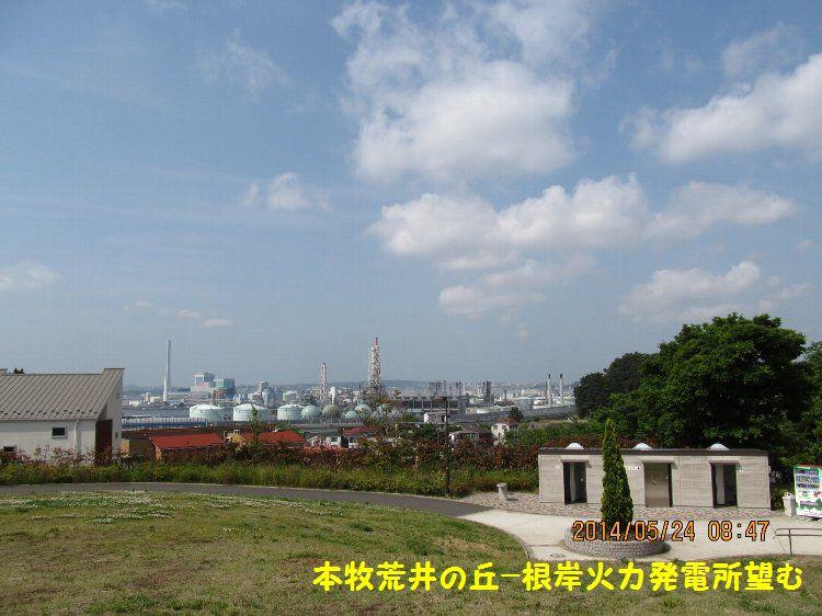 20140524honmoku12.jpg