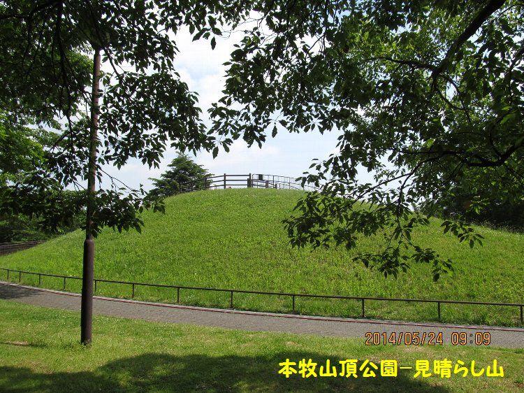 20140524honmoku14.jpg