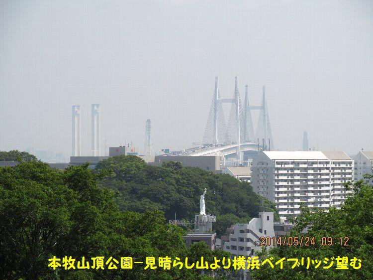 20140524honmoku15.jpg