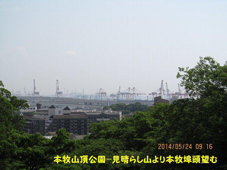 20140524honmoku16.jpg