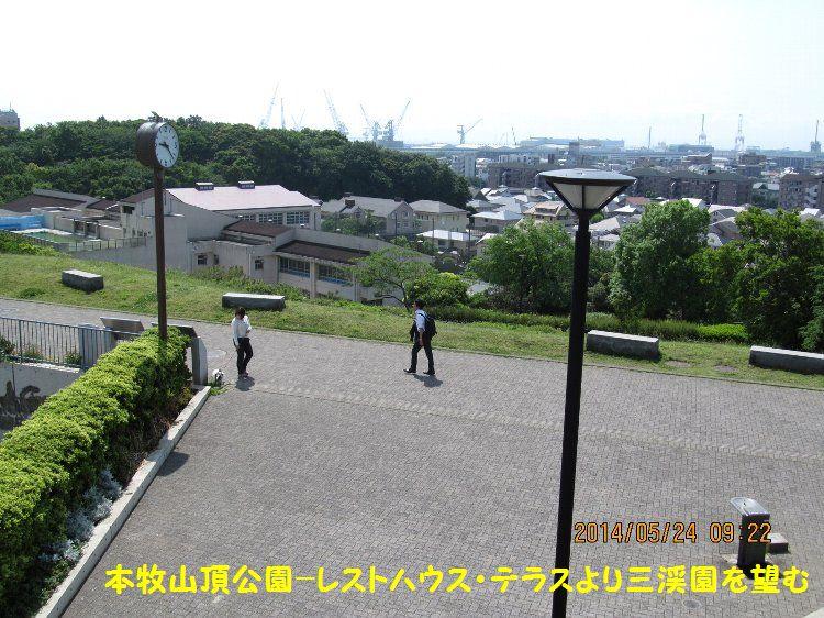 20140524honmoku17.jpg