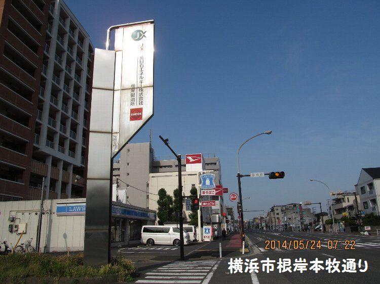 20140524negishi04.jpg