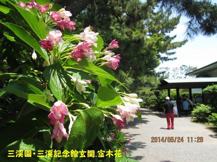 20140524sankei16.jpg