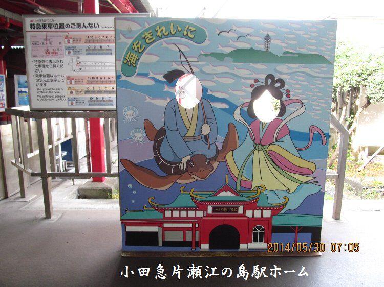 20140530enoshima02.jpg
