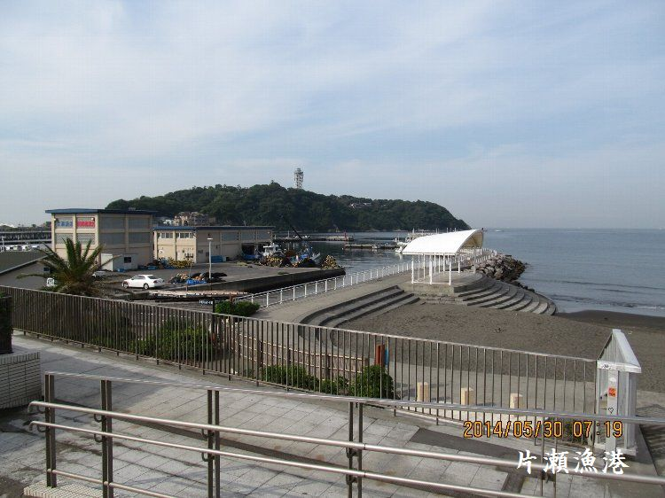 20140530enoshima04.jpg