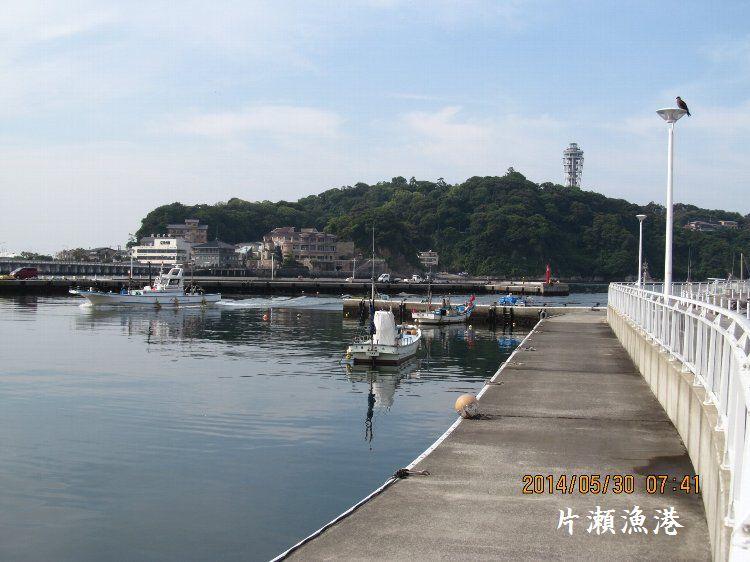 20140530enoshima10.jpg