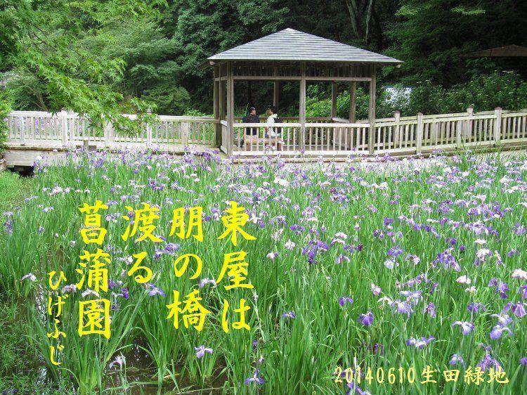 20140610haiku02.jpg