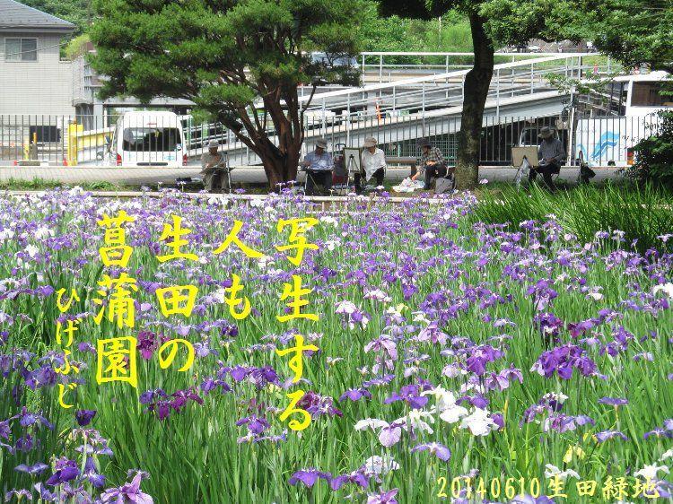 20140610haiku10.jpg