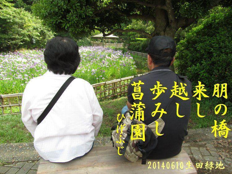 20140610haiku21.jpg