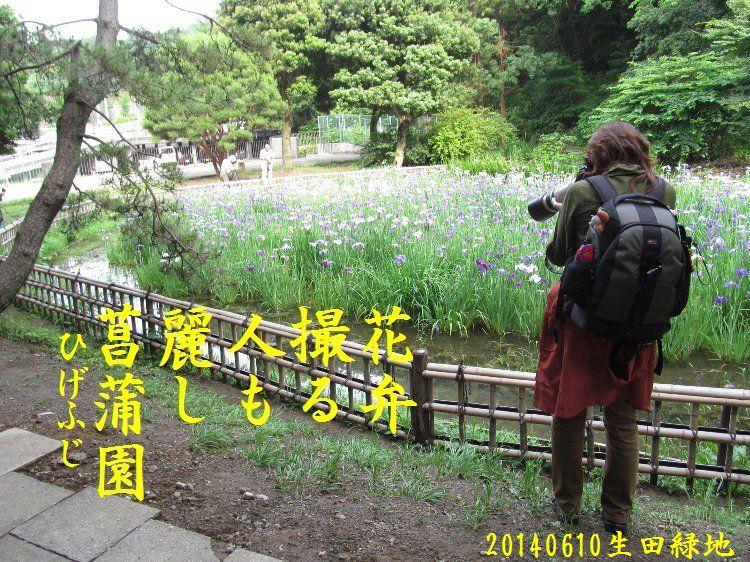 20140610haiku26.jpg