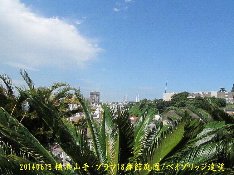 20140613bbluff06.jpg