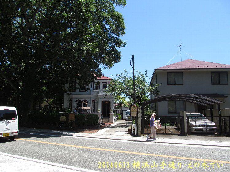 20140613enoki06.jpg