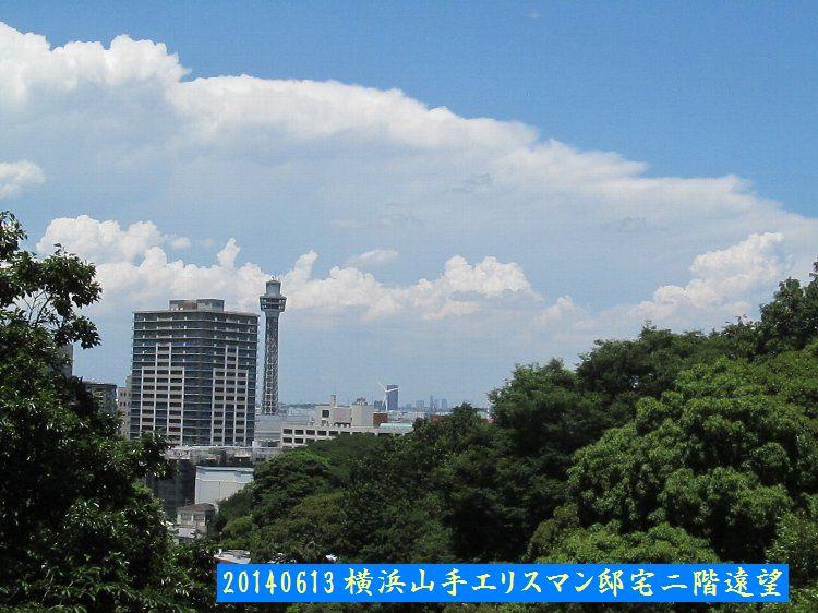 20140613enoki07.jpg